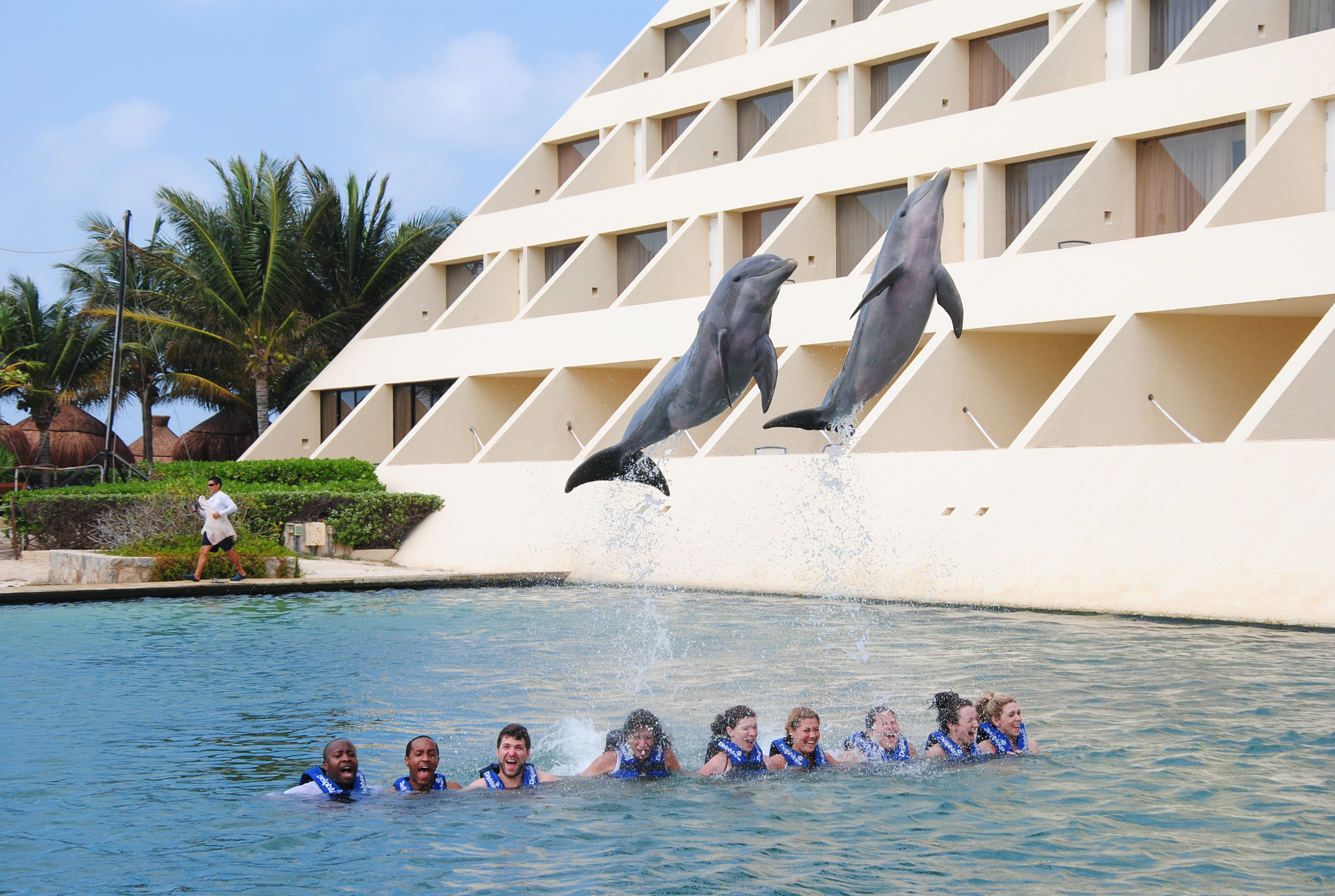 delphinus dreams cancun – day dreams | the official blog of dreams