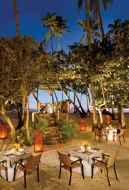 Enjoy Dominican specialties and a spectacular ocean views at the gourmet à la carte Jungle Restaurant.