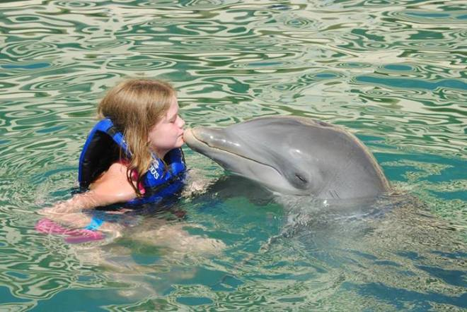 Recent guest Kathryn's daughter steals a kiss from a friendly dolphin at Dreams Cancun Resort & Spa