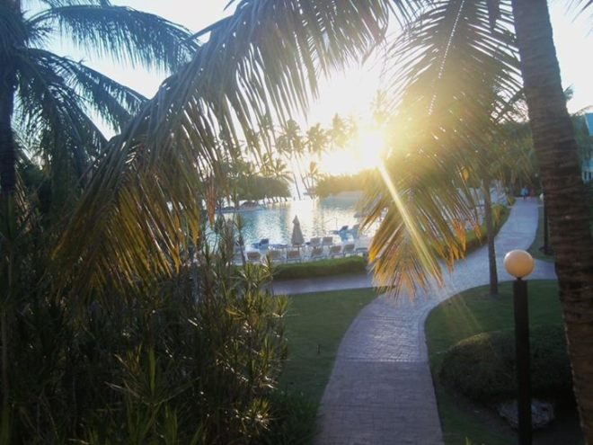 Sue at Dreams La Romana Resort & Spa sent us this stunning photo of sunlight peeking in through the palm trees!