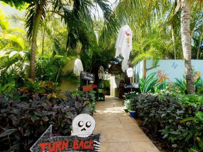 You never know what spooks may await you down this path at Dreams Cancun.